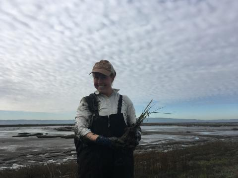 Planting native plans after invasive removal
